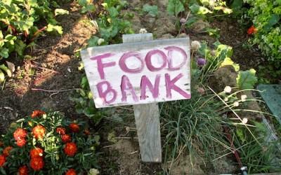 Community Gardeners seek new ground